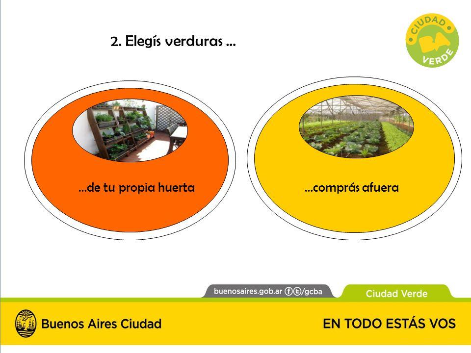 2. Elegís verduras … …de tu propia huerta …comprás afuera