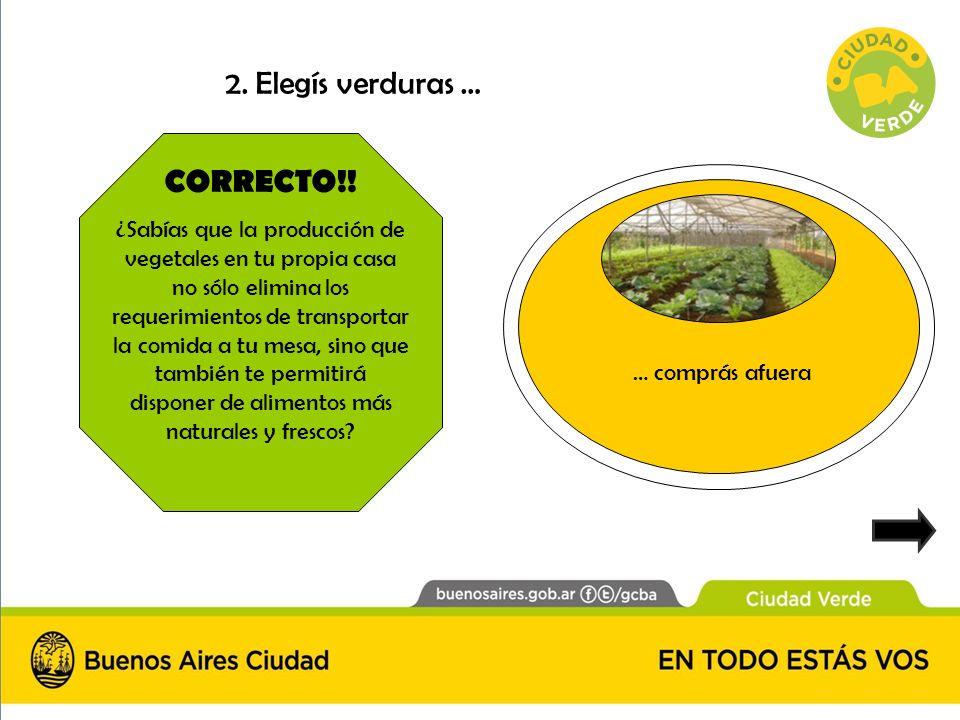 2. Elegís verduras … CORRECTO!!