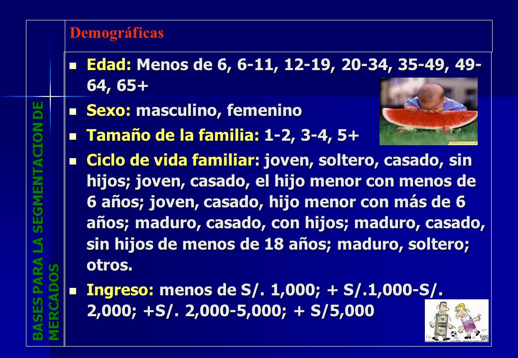 BASES PARA LA SEGMENTACION DE MERCADOS