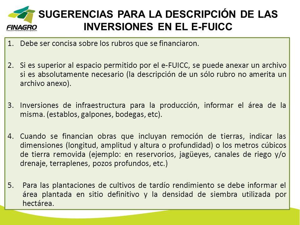 SUGERENCIAS PARA LA DESCRIPCIÓN DE LAS INVERSIONES EN EL E-FUICC