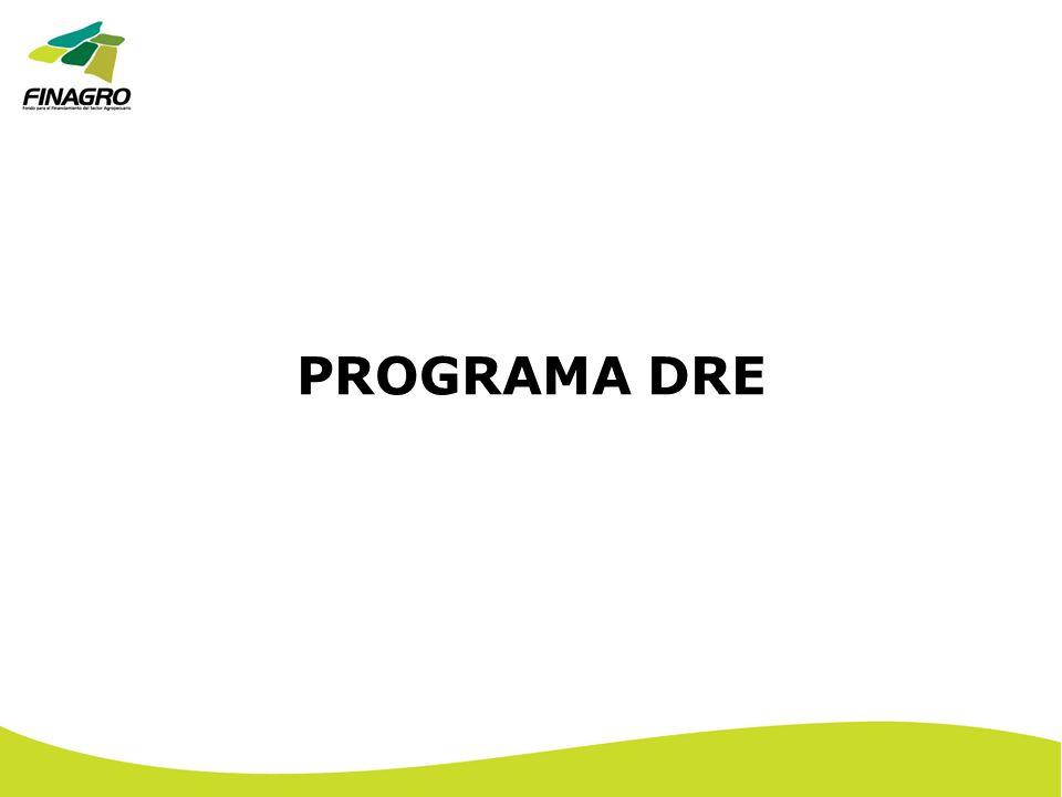 PROGRAMA DRE