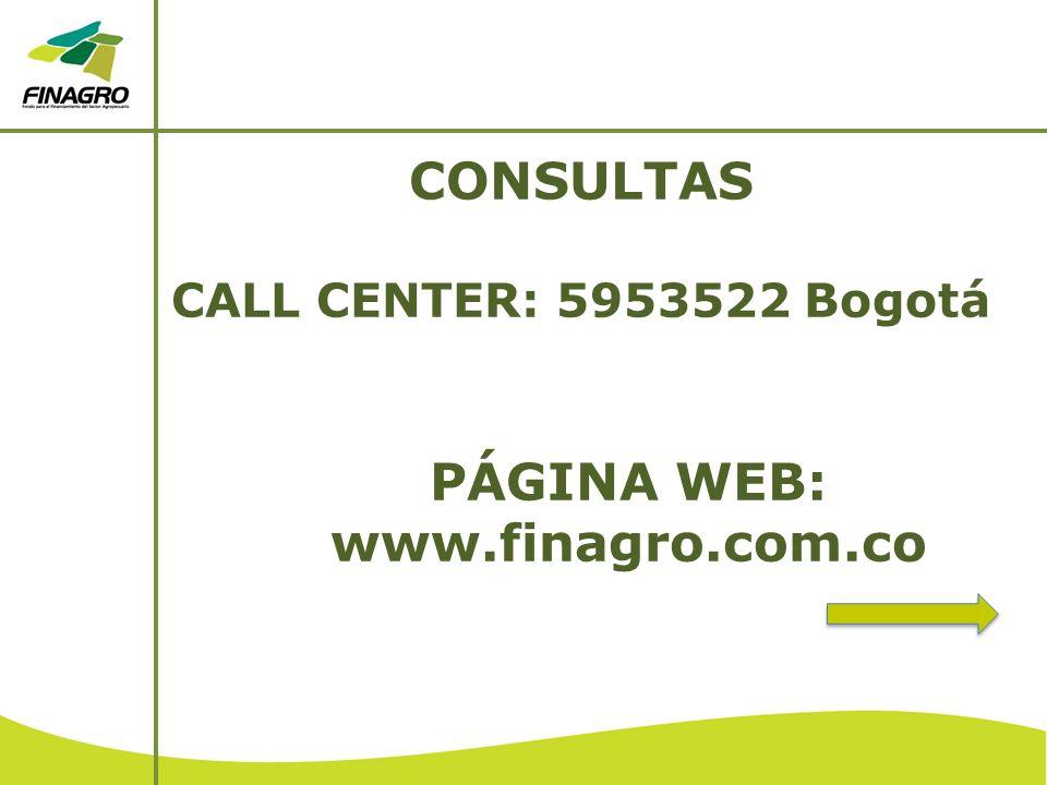CONSULTAS CALL CENTER: 5953522 Bogotá PÁGINA WEB: www.finagro.com.co