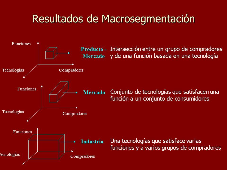 Resultados de Macrosegmentación