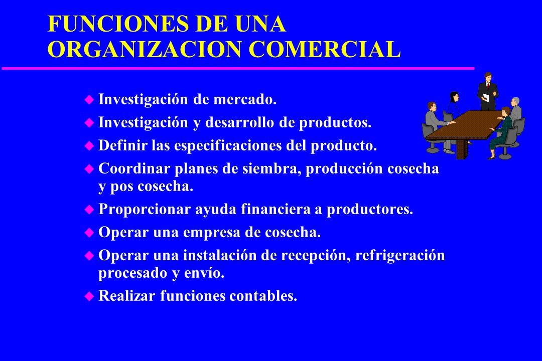 FUNCIONES DE UNA ORGANIZACION COMERCIAL