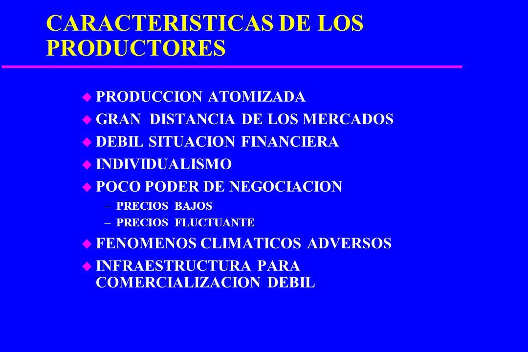 CARACTERISTICAS DE LOS PRODUCTORES