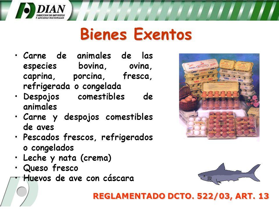 REGLAMENTADO DCTO. 522/03, ART. 13