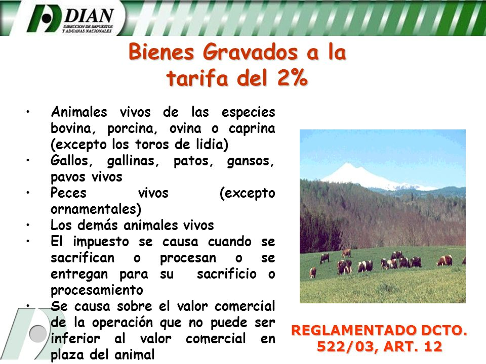 REGLAMENTADO DCTO. 522/03, ART. 12