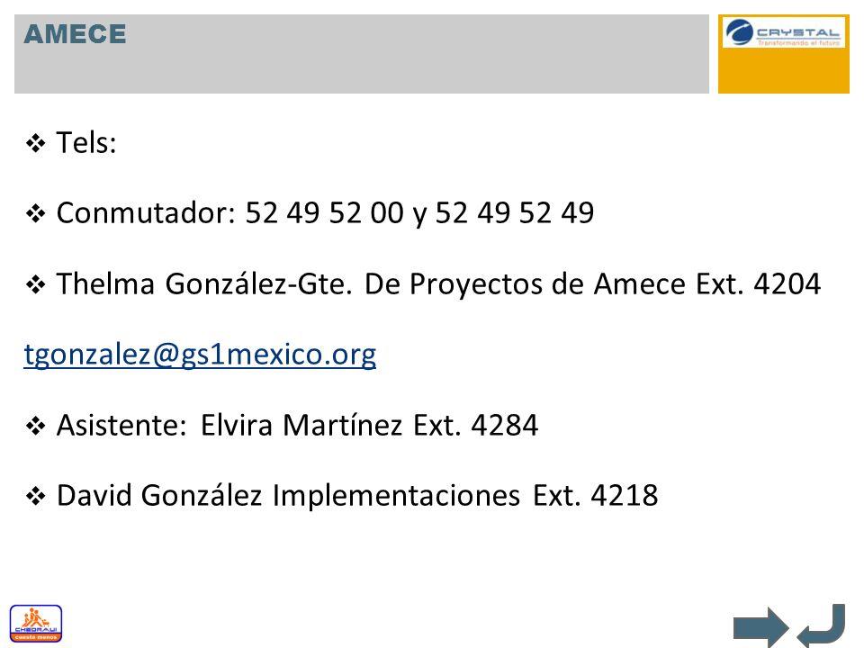 Thelma González-Gte. De Proyectos de Amece Ext. 4204