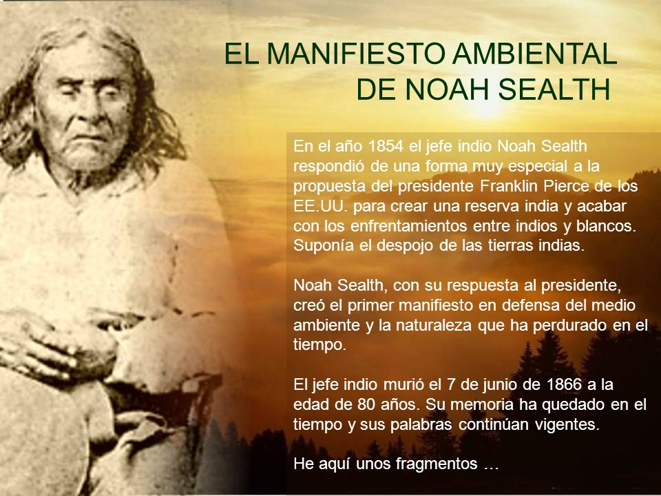 EL MANIFIESTO AMBIENTAL DE NOAH SEALTH