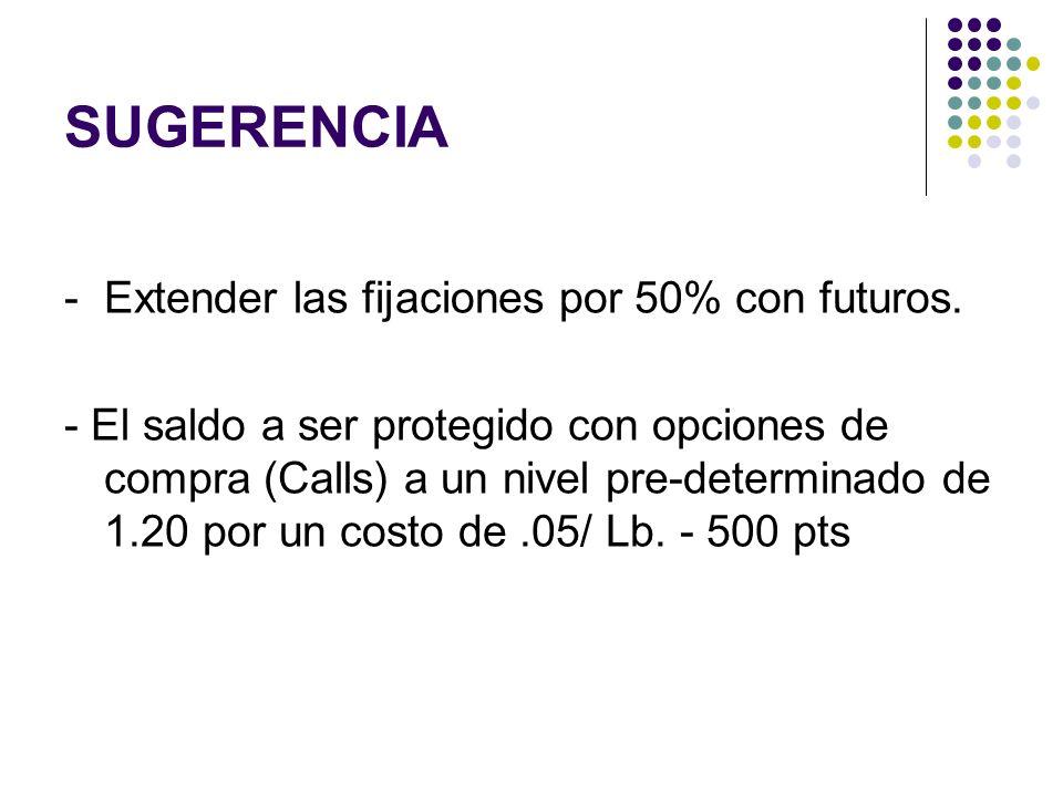 SUGERENCIA - Extender las fijaciones por 50% con futuros.
