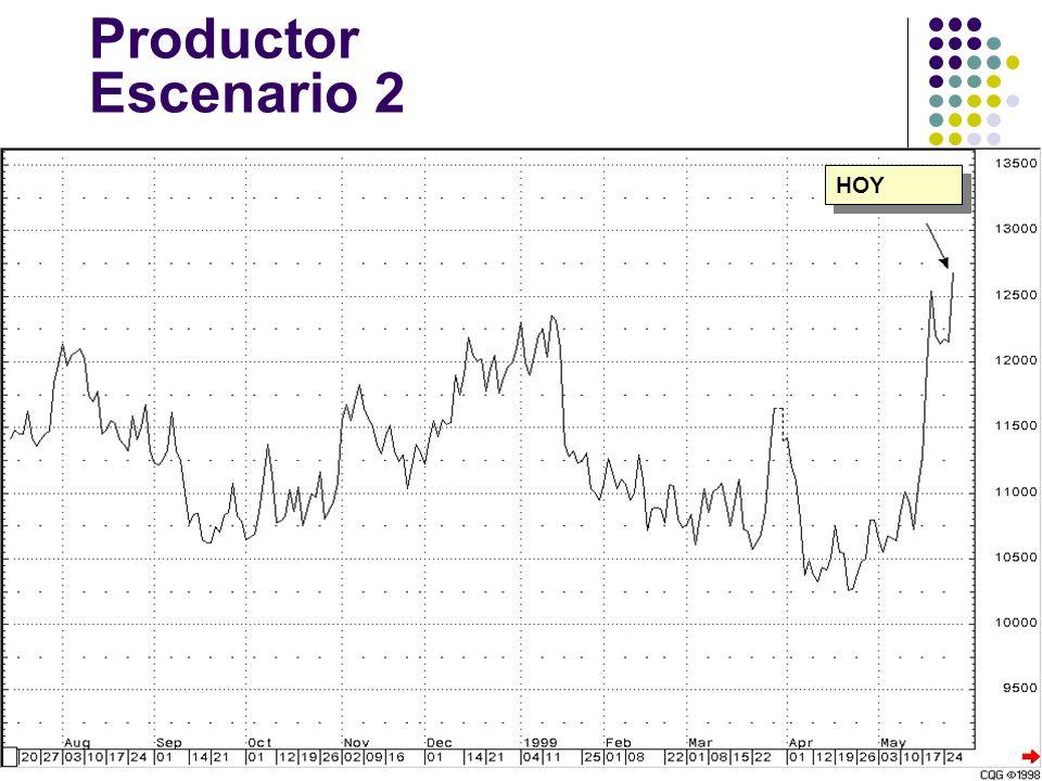 Productor Escenario 2 HOY