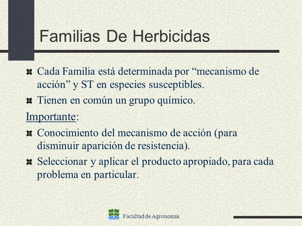 Familias De Herbicidas