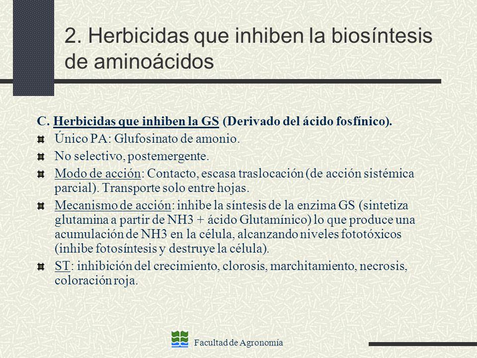 2. Herbicidas que inhiben la biosíntesis de aminoácidos