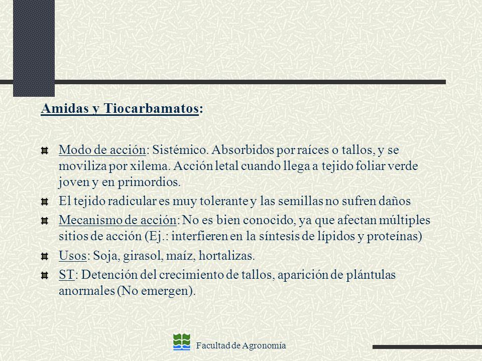 Amidas y Tiocarbamatos: