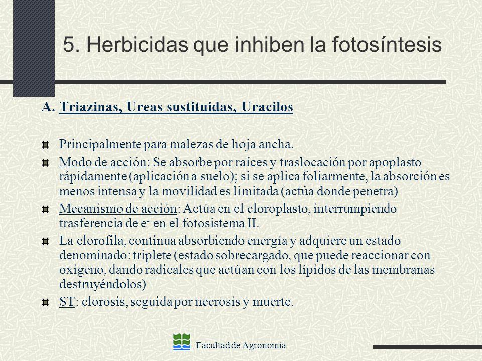 5. Herbicidas que inhiben la fotosíntesis
