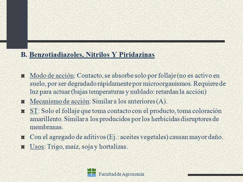 B. Benzotiadiazoles, Nitrilos Y Piridazinas