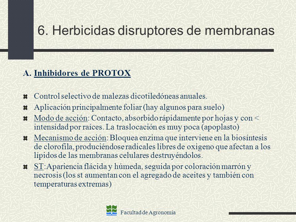6. Herbicidas disruptores de membranas