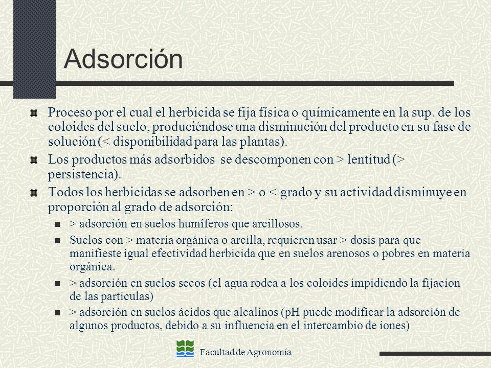 Adsorción