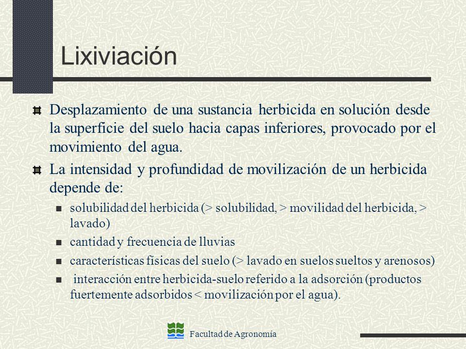Lixiviación
