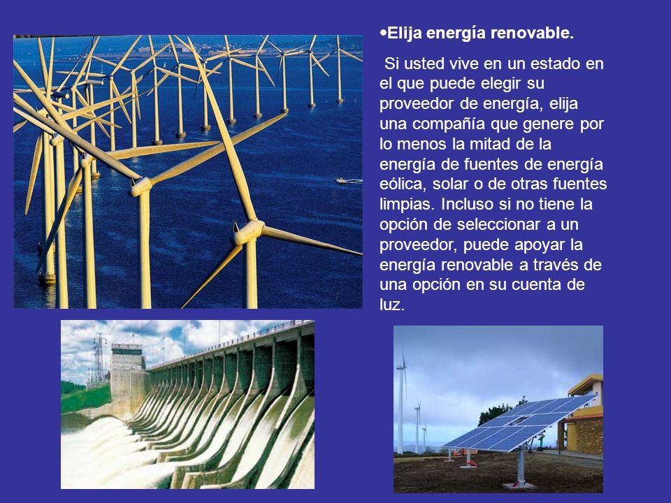 Elija energía renovable.