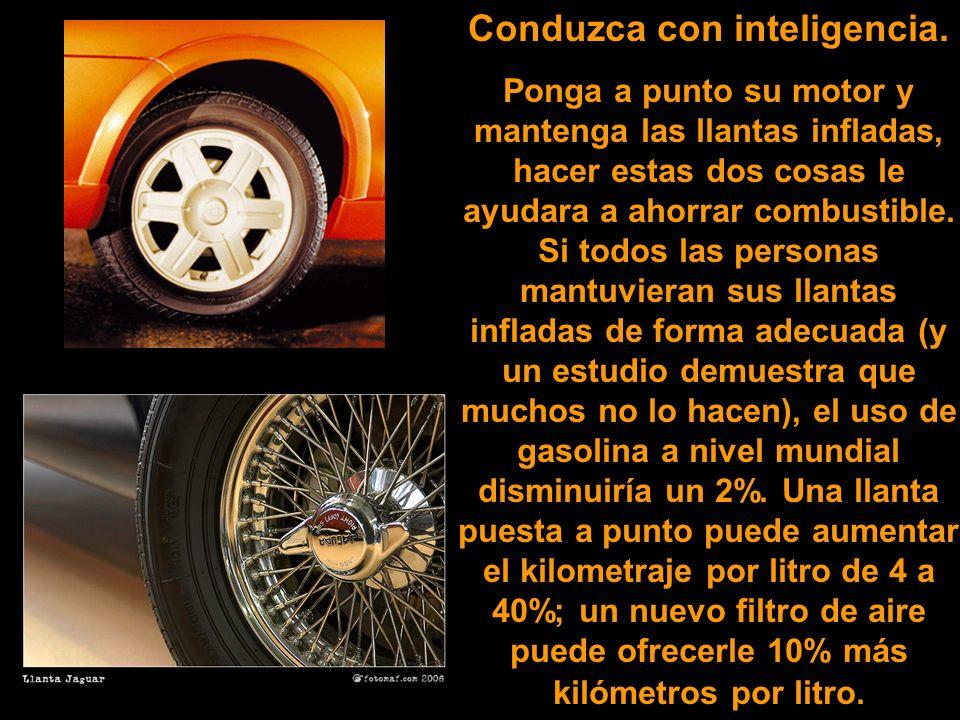 Conduzca con inteligencia.