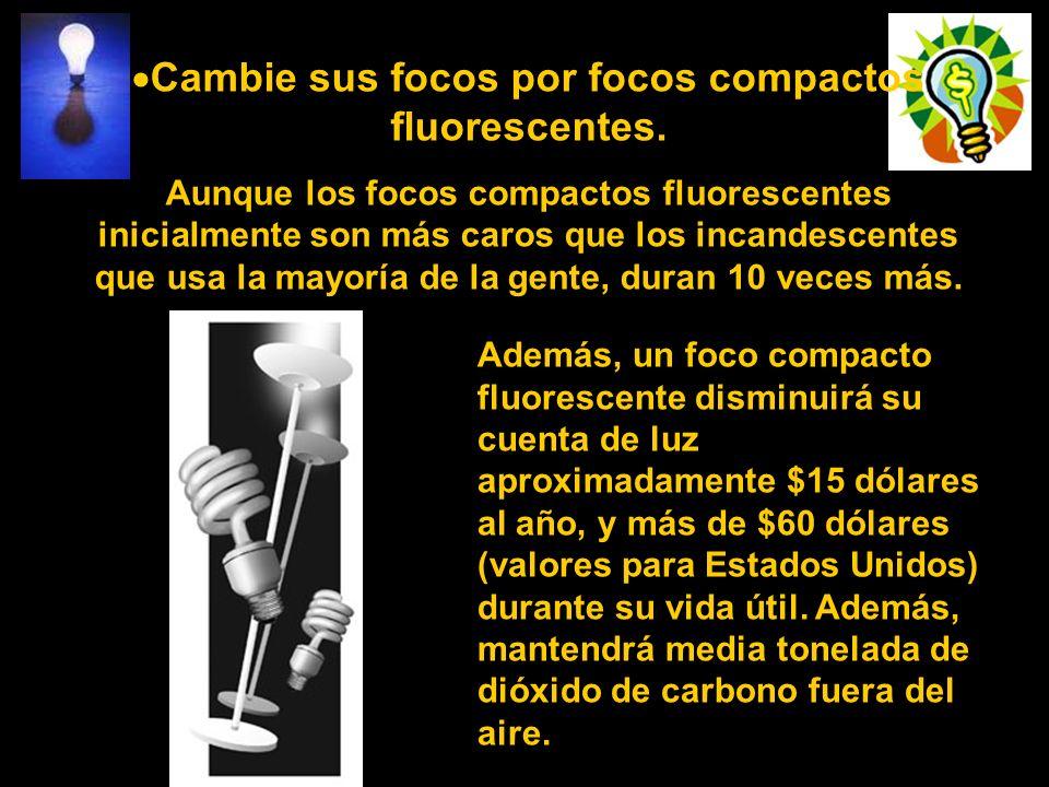 Cambie sus focos por focos compactos fluorescentes.