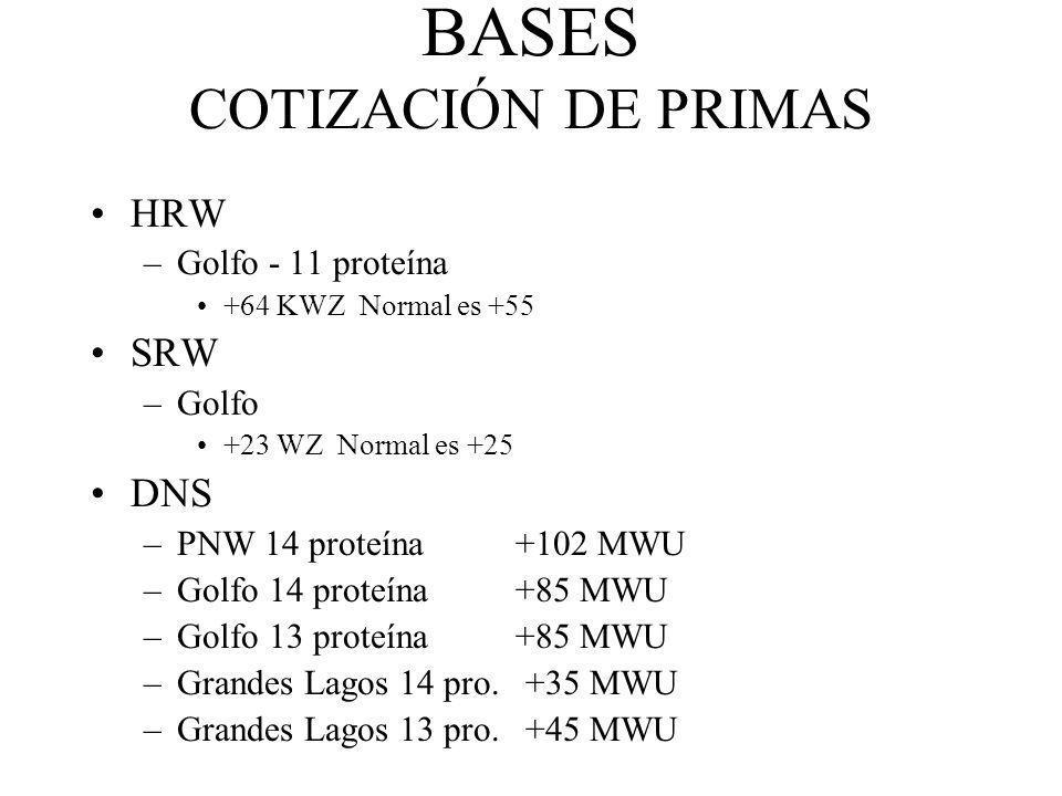 BASES COTIZACIÓN DE PRIMAS