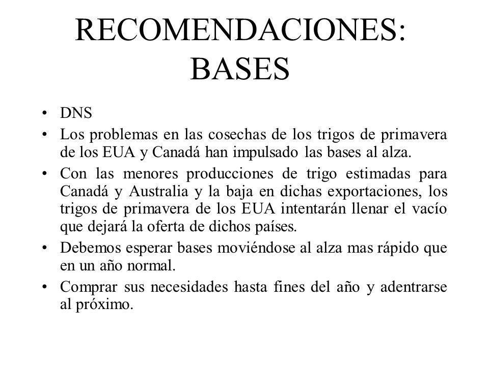 RECOMENDACIONES: BASES