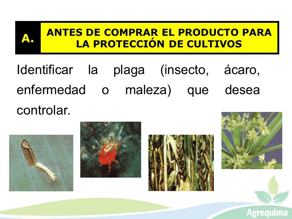 ANTES DE COMPRAR EL PRODUCTO PARA LA PROTECCIÓN DE CULTIVOS