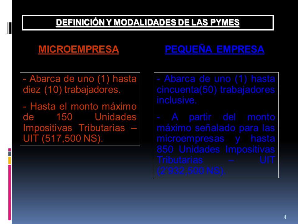 DEFINICIÓN Y MODALIDADES DE LAS PYMES
