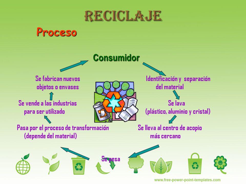Reciclaje Proceso Consumidor