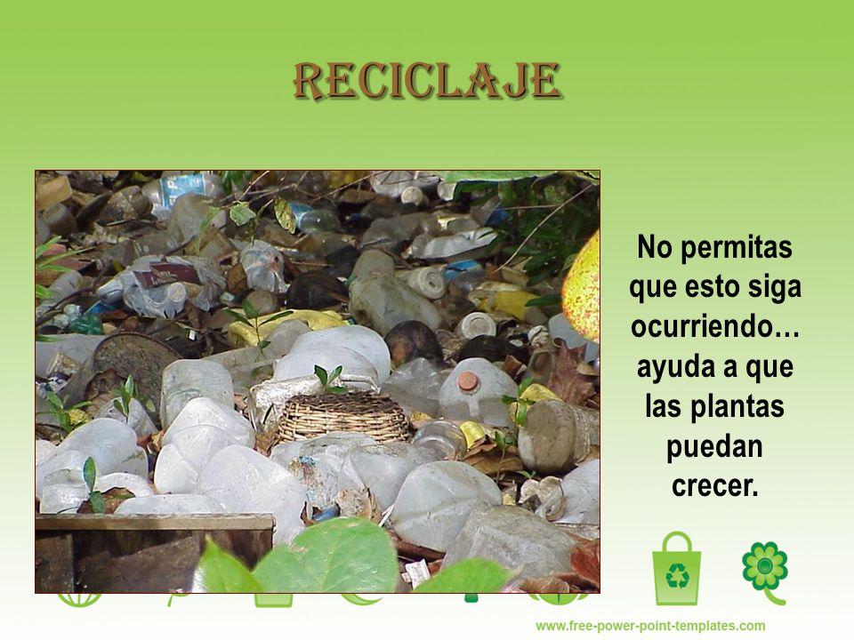 Reciclaje No permitas que esto siga ocurriendo…ayuda a que las plantas puedan crecer.