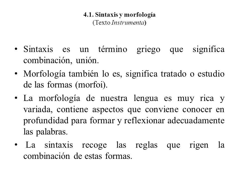 4.1. Sintaxis y morfología (Texto Instrumenta)