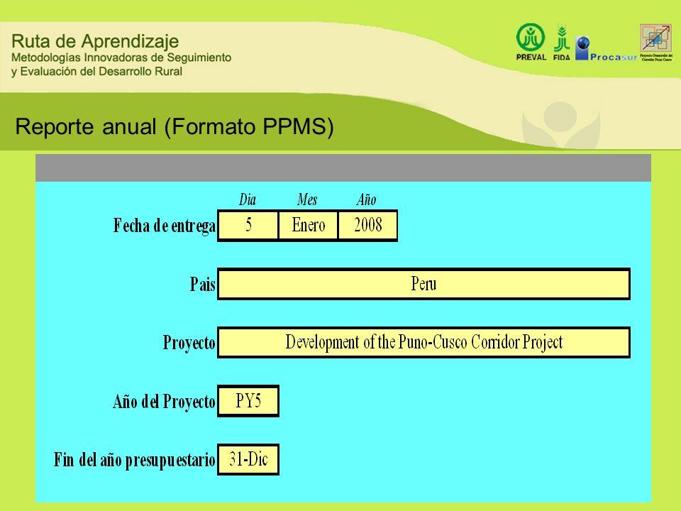 Reporte anual (Formato PPMS)