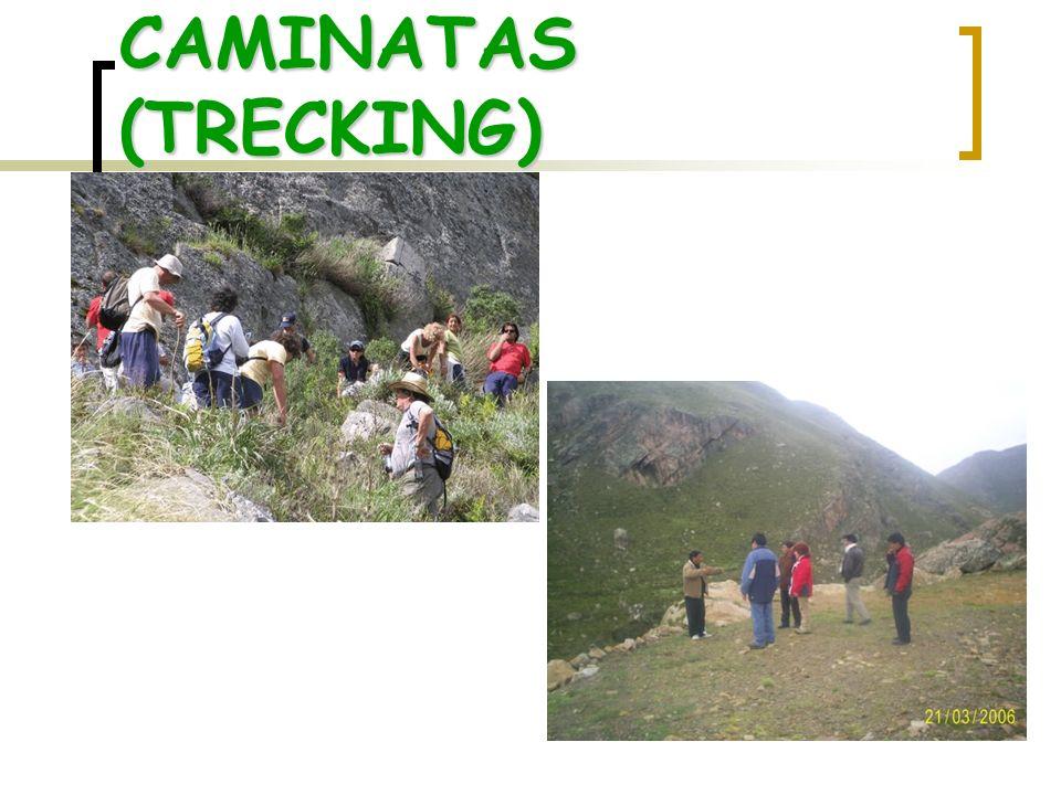 CAMINATAS (TRECKING)