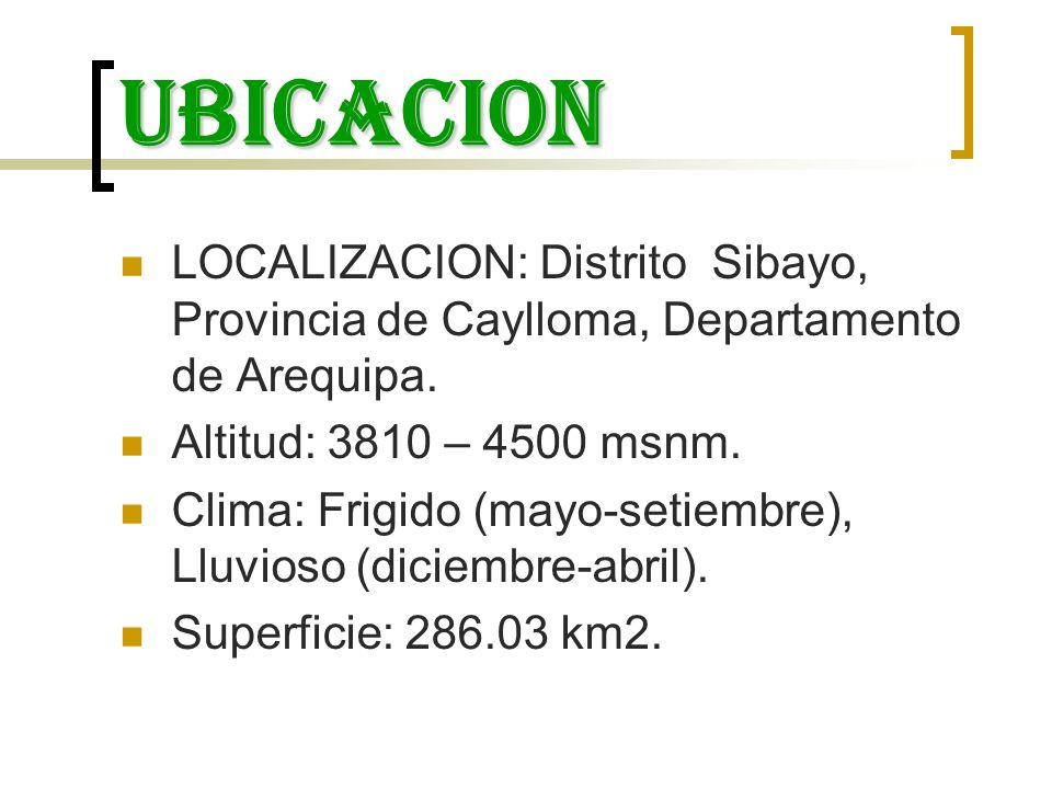 ubicacion LOCALIZACION: Distrito Sibayo, Provincia de Caylloma, Departamento de Arequipa. Altitud: 3810 – 4500 msnm.