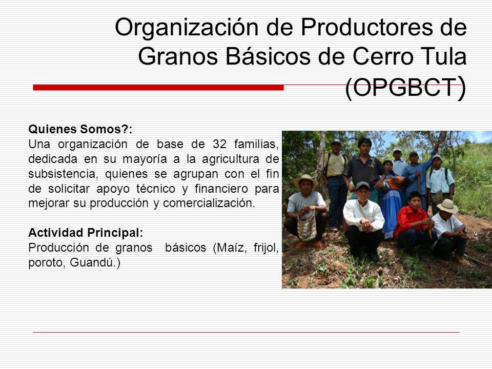 Organización de Productores de Granos Básicos de Cerro Tula (OPGBCT)