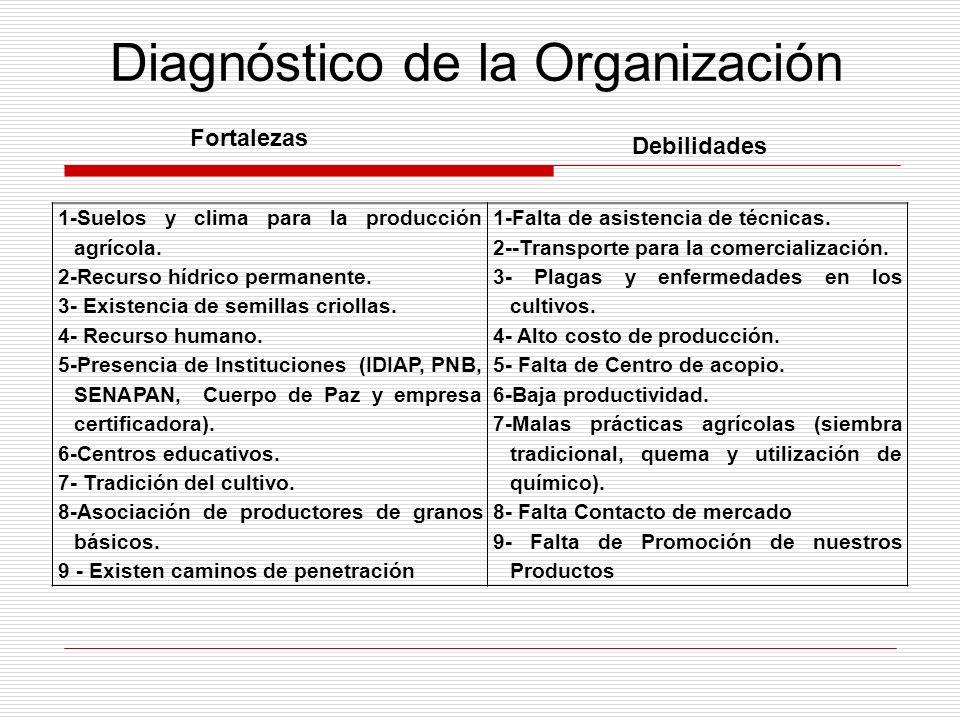 Diagnóstico de la Organización