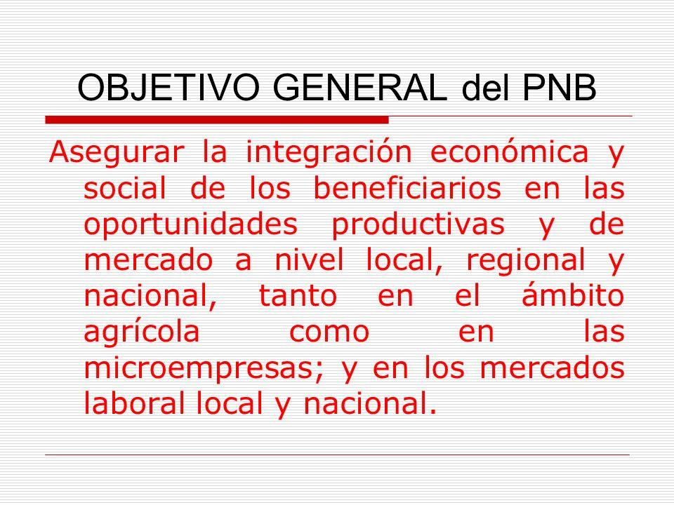 OBJETIVO GENERAL del PNB