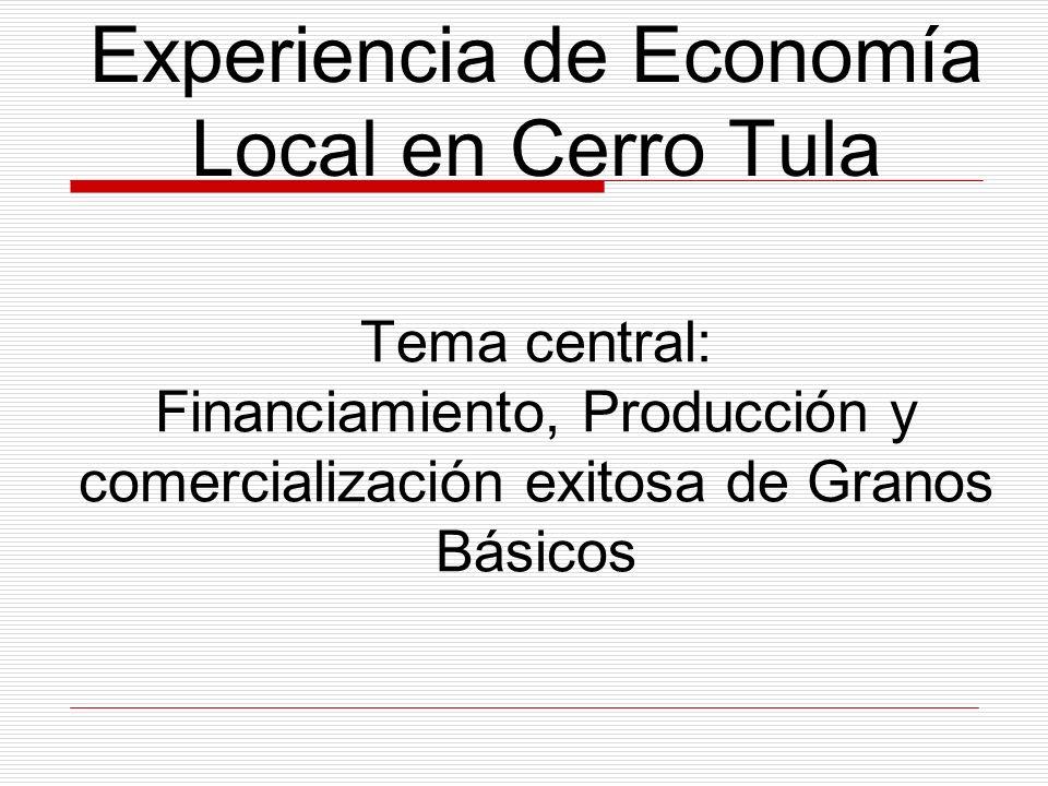 Experiencia de Economía Local en Cerro Tula