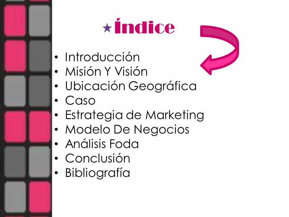 Índice Introducción Misión Y Visión Ubicación Geográfica Caso