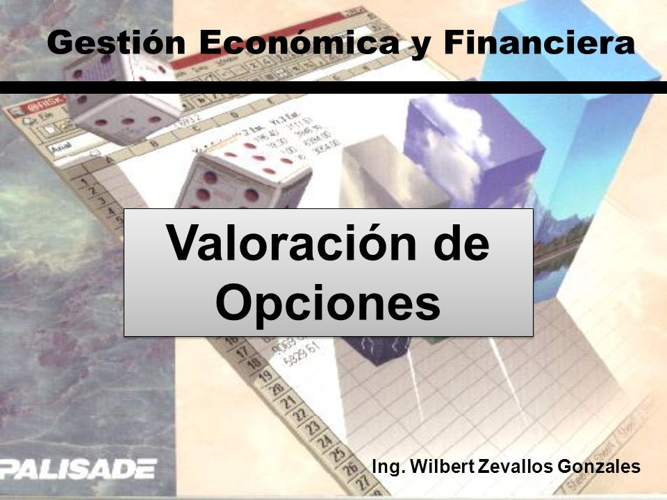 Valoración de Opciones