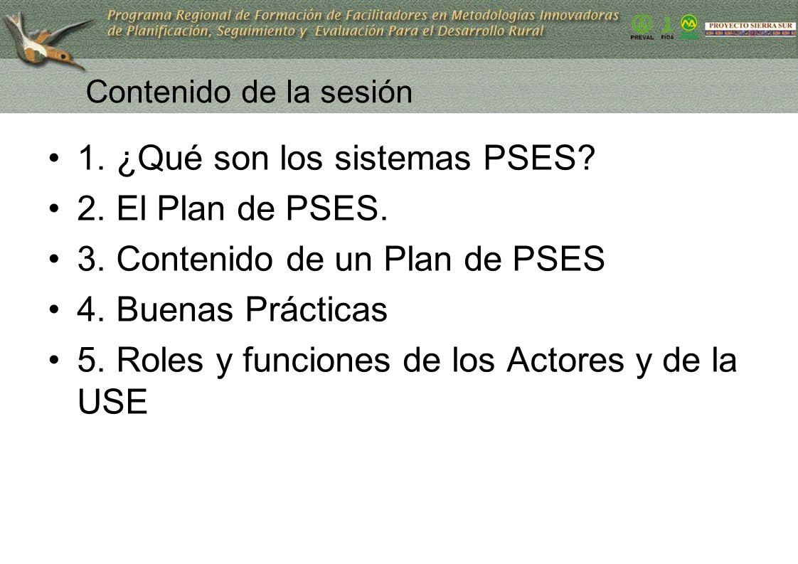 1. ¿Qué son los sistemas PSES 2. El Plan de PSES.