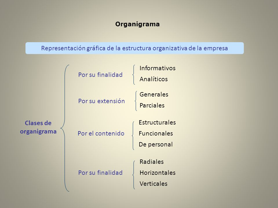 Representación gráfica de la estructura organizativa de la empresa
