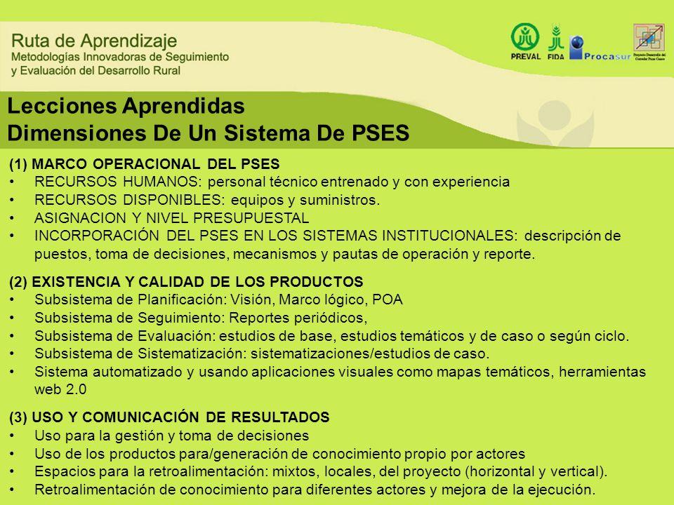 Dimensiones De Un Sistema De PSES