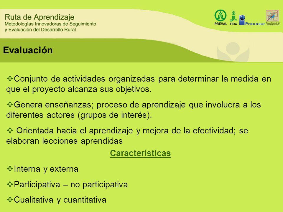 Evaluación Conjunto de actividades organizadas para determinar la medida en que el proyecto alcanza sus objetivos.
