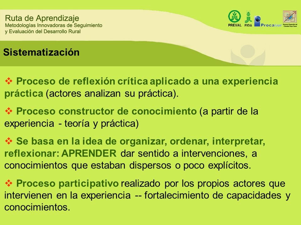 Sistematización Proceso de reflexión crítica aplicado a una experiencia práctica (actores analizan su práctica).