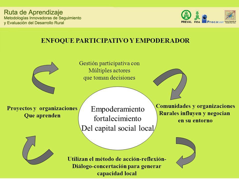 Del capital social local