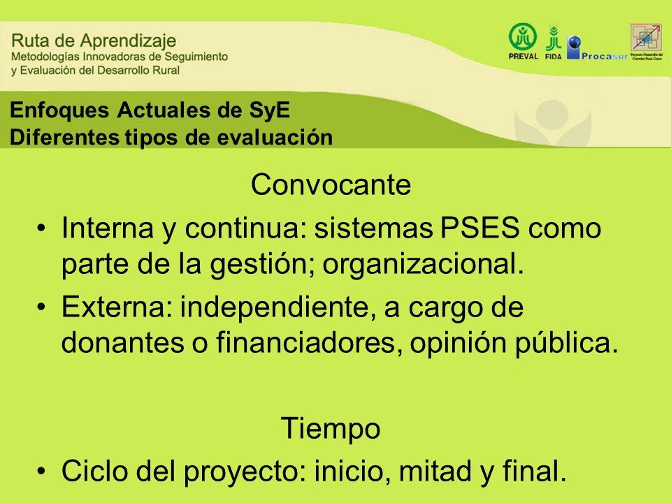 Enfoques Actuales de SyE Diferentes tipos de evaluación