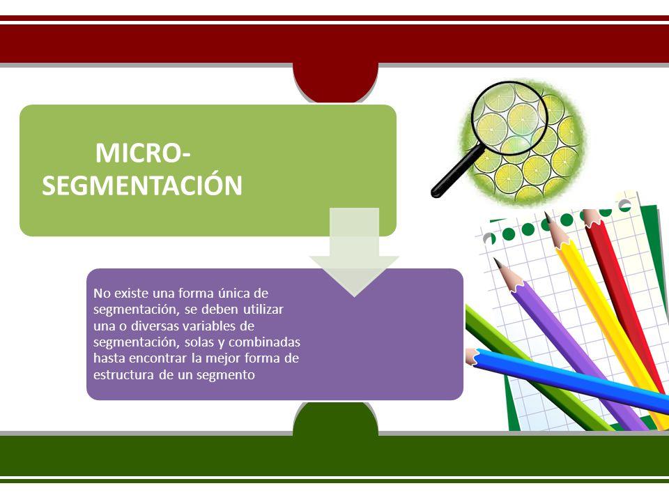 MICRO-SEGMENTACIÓN